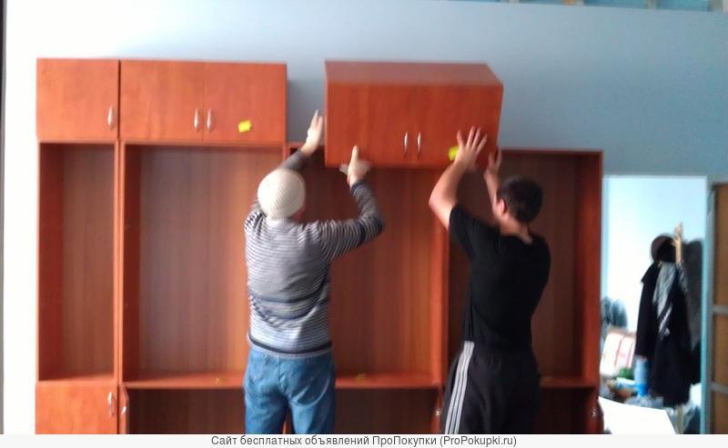 Грузчики в Смоленске • Любые виды работ!