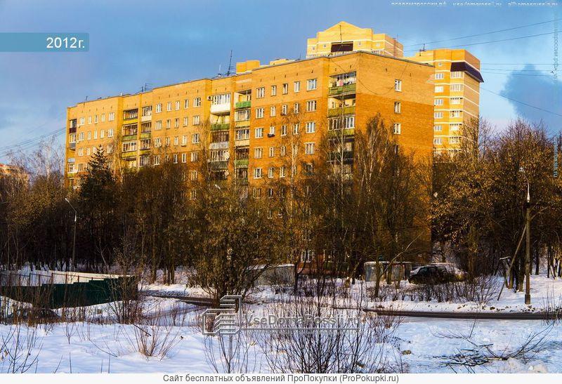 Сдаю однокомнатную квартиру в Красногорске (хозяин) с видом на лес