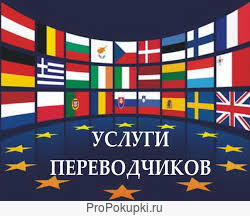 Перевод инструкции письменно в России