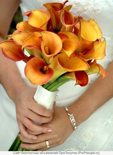 Свадебная фото и видеосъемка.