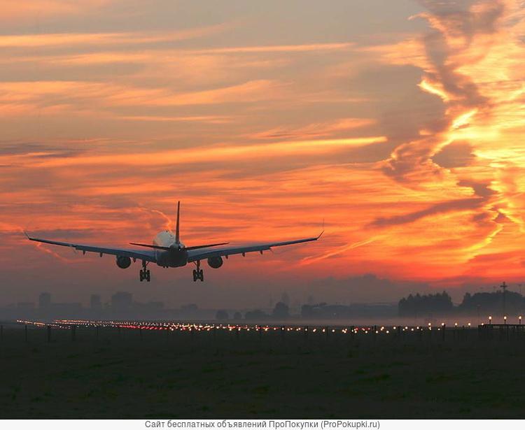 Срочные авиационные грузоперевозки из Москвы