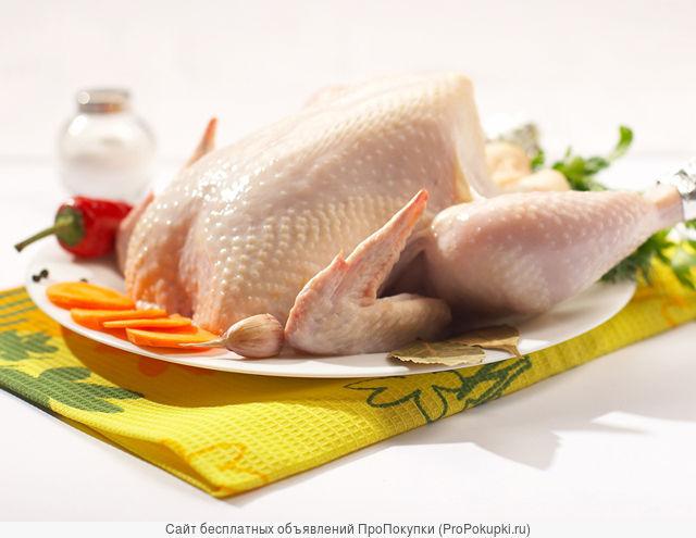 Парное мясо домашней птицы