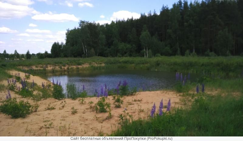 Земельные участки от собственика в Киржачском районе Владимирской области