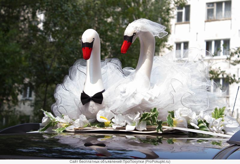Тамада на свадьбу в Ижевске и Удмуртии