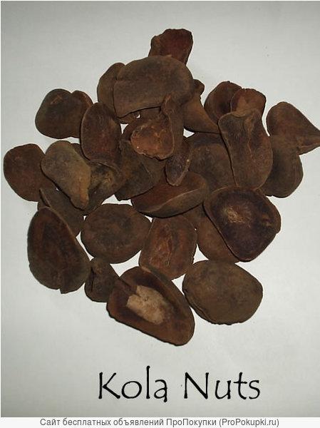 Кола орех сушёный молотый