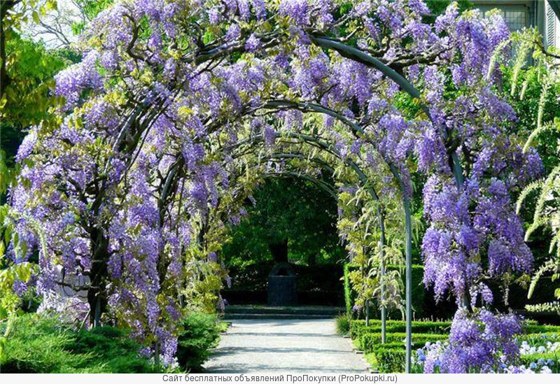 Изготовление беседок и арок для вьющихся растний