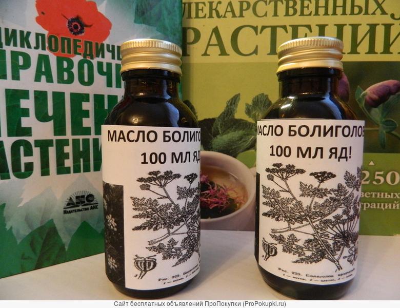 Болиголов в лечении рака. настойка и масло болиголова купить