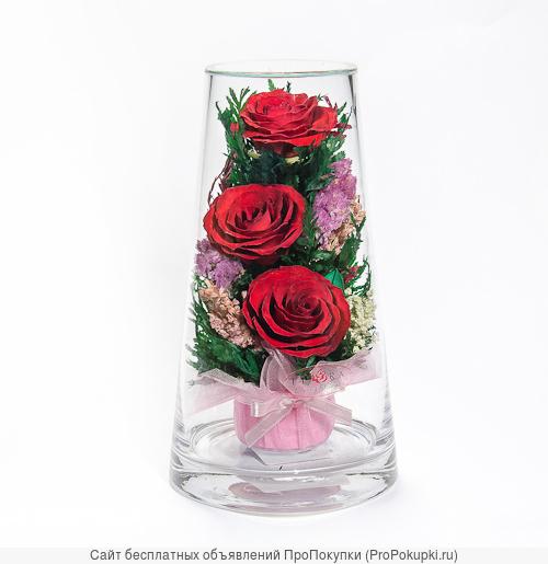 Композиции из живых роз красных