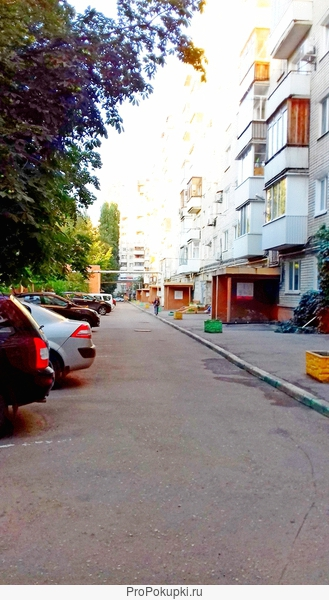 Сдам 1-комнатную квартиру в центре Саратова