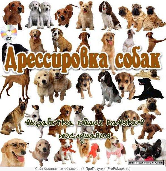 Высшая школа дрессировки собак всех пород