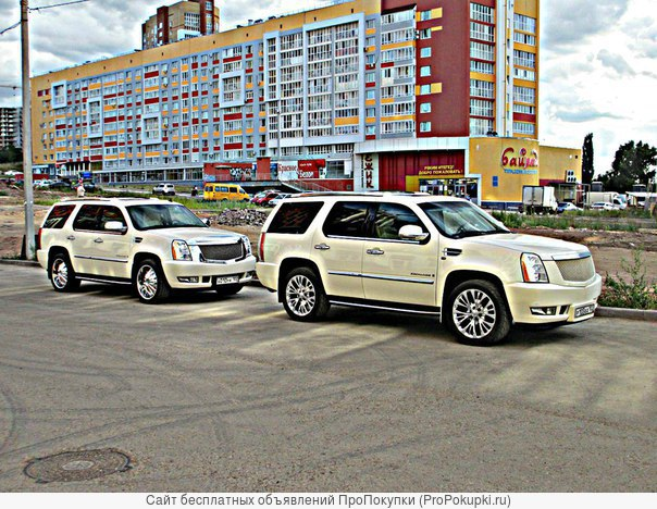 Аренда и прокат машин в Уфе, Лимузины, Микроавтобусы, Автобусы