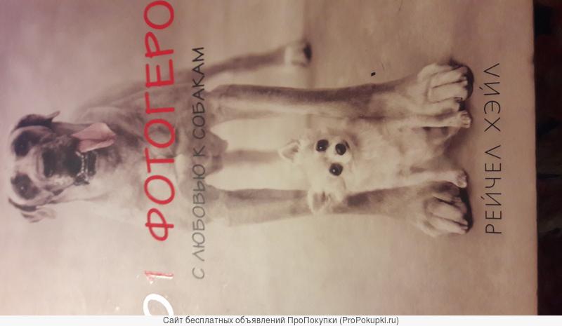 Подарок. 101 фото С любовью к собакам