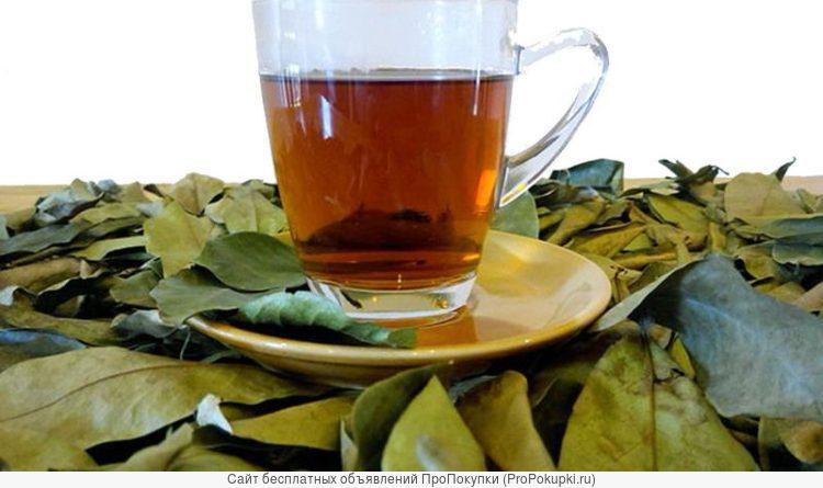 Короссоль. Лечебный чай из Западной Африки