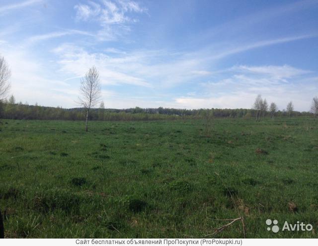 Земельный участок 15 соток, в зоне отдыха, Ясная поляна