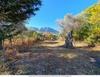 Продается участок для туристических резиденций на Тасос