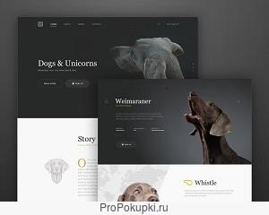 Создание Сайта-Компании