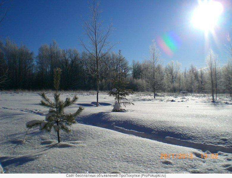 Большой лесной участок бизнес класса на территории Новой Москвы