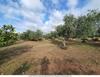 Земельный участок в районе Лименарии на острове Тасос