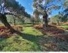 Продается земельный участок для туристического бизнеса в Тасосе