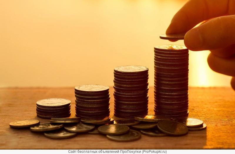 Ищем инвестора в действующий тендерный бизнес