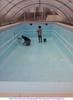Мытье бассейна
