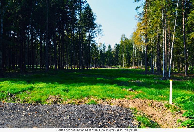 Продаю земельный участок в поселке Лесная Быль