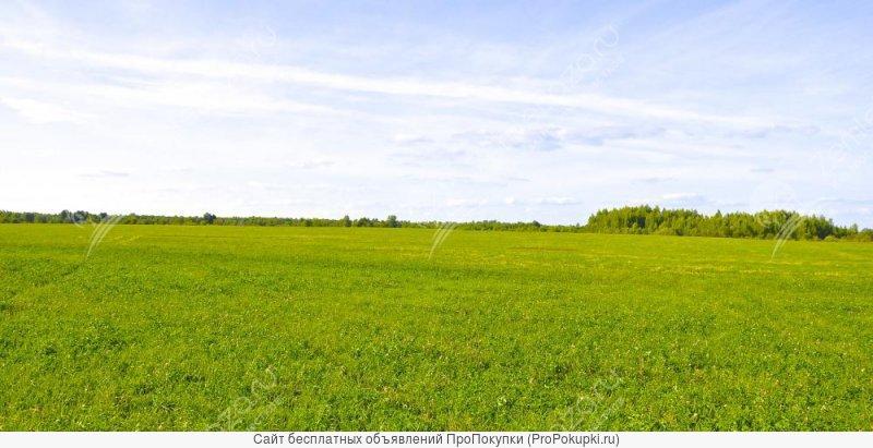 земельный учосток в деревне Агтнтово