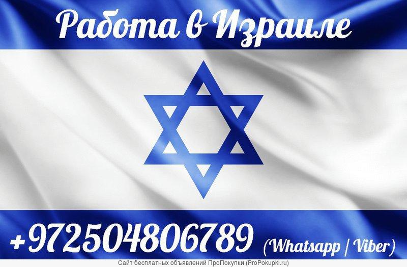 Легальное трудоустройство в Израиле для граждан РФ