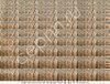 Готовые субстратные грибные блоки для выращивания грибов вешенка