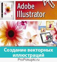Курсы компьютерной графики Adobe Illustrator