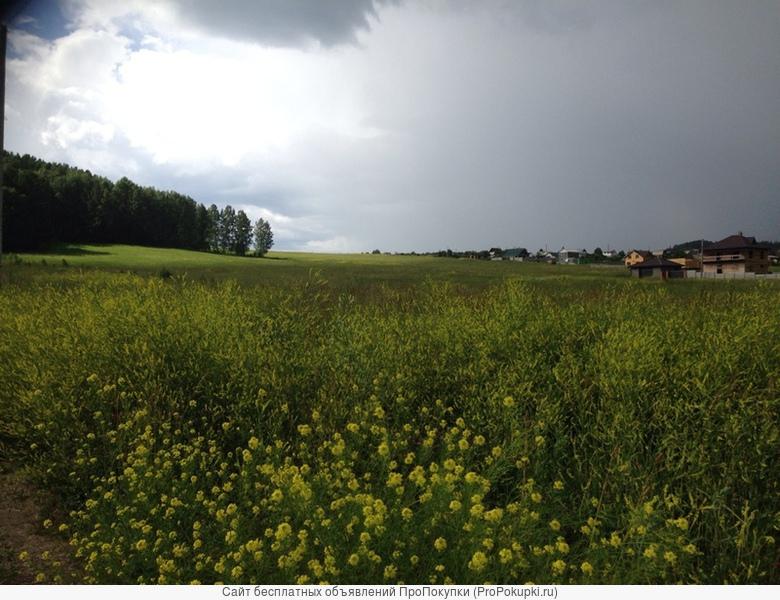 Продам земельные участки в пос Манском (Дивногорск)
