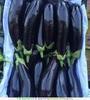 ООО «Мейгу» является прямым поставщиком овощей и фруктов из Ирана