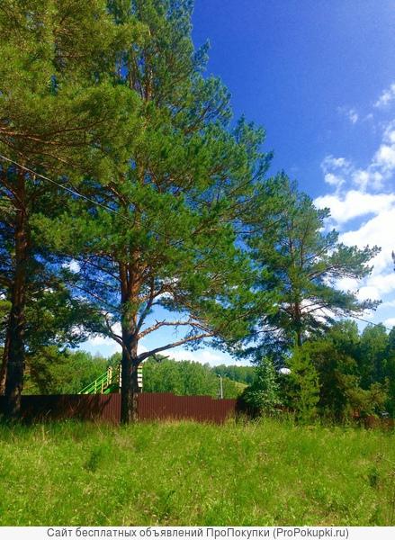 Продам участок к лесу с панорамным видом