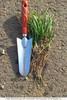 Стимулятор роста растений - органическое удобрение ПроРостим