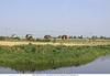 Земельный участок у воды в подмосковье на дмитровской трассе