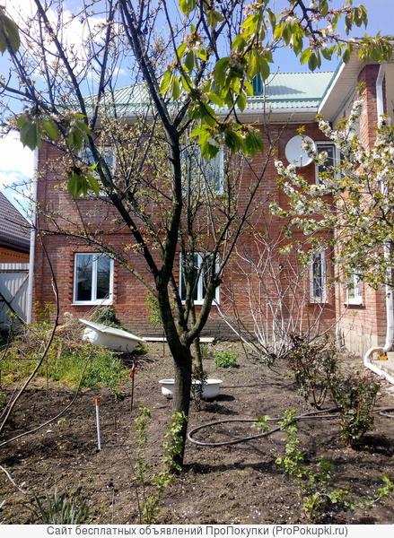 Продается в Краснодаре домовладение 2 этажа на участке 0,65 га