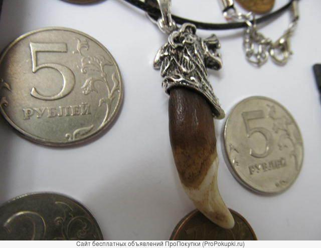 Амулет Клык волка коричневый с навершием из серебра 925 пробы