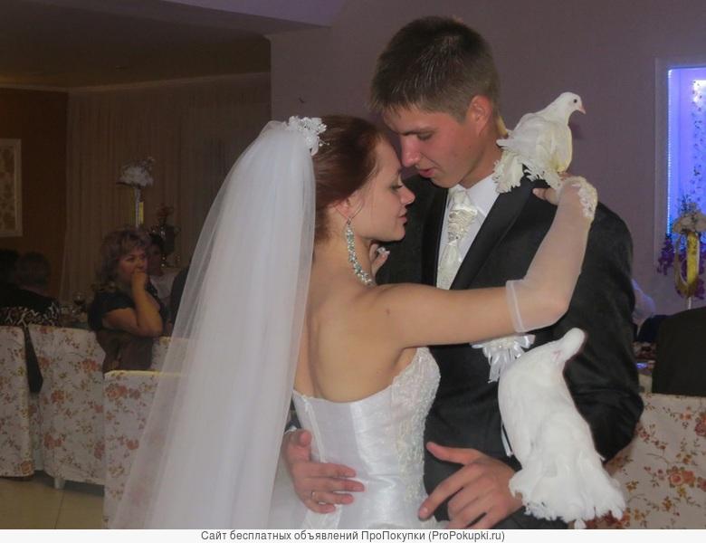 Ведущая на свадьбу,юбилей.Выездная регистрация брака. Музыка-любая