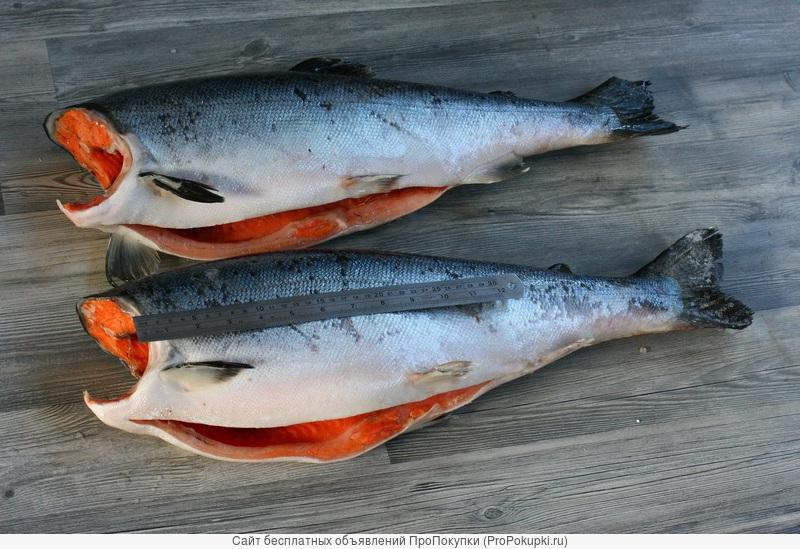 Рыба и морепродукты в розницу по оптовым ценам