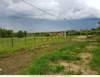 Земельный участок 15 соток, Дмитровский округ, в деревне Ольявидово