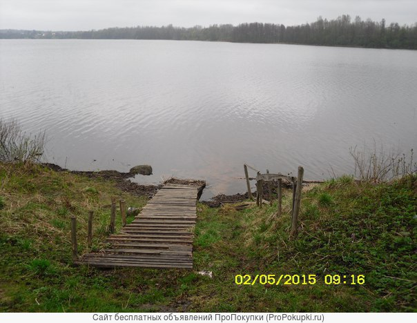 продам участок в садоводстве,озеро долгое сланцевский р-н