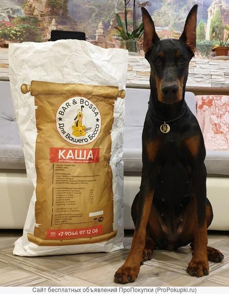 Дешёвый и популярный корм для собак без крахмала и аллергенов