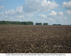 В аренду на длительный срок земельный участок сельхоз 102 ГА.