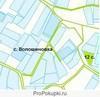 Продажа земельної ділянки для садівництва в с. Волошинівка