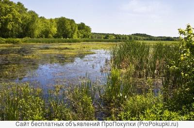 Поиски и оценка донных илов для производства удобрений и почвосмесей