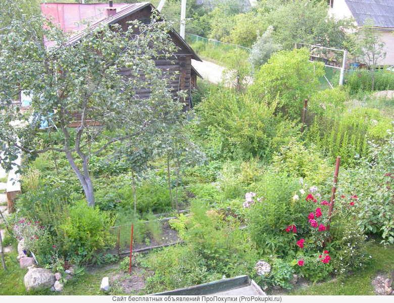 Дача в садово-огородном товариществе