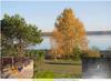 Продажа усадьбы на берегу Обского водохранилища