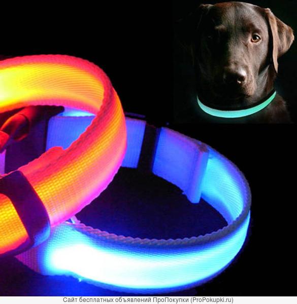 светодиодный ошейник собакам