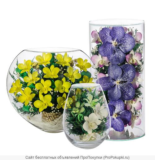 Живые цветы в стекле оптом