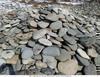 Речной камень, валуны, галька, песчаник.